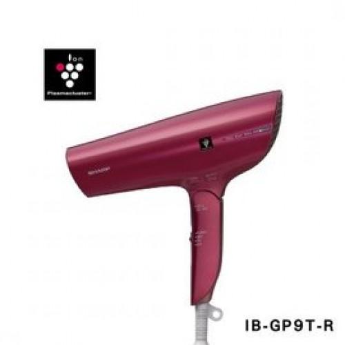 IB-GP9T-R